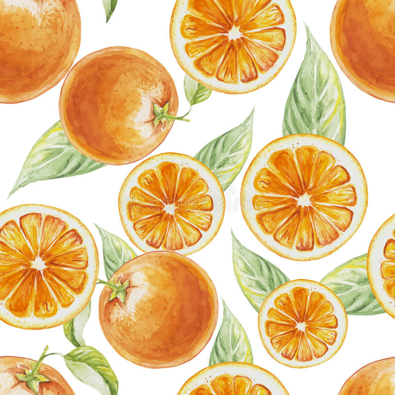 Watercolor seamless pattern of orange fruit with leafs stock illustration