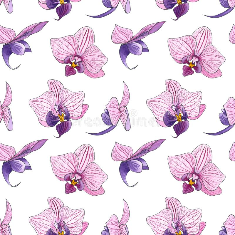 Watercolor seamless pattern with pink orchid flowers royalty free illustration