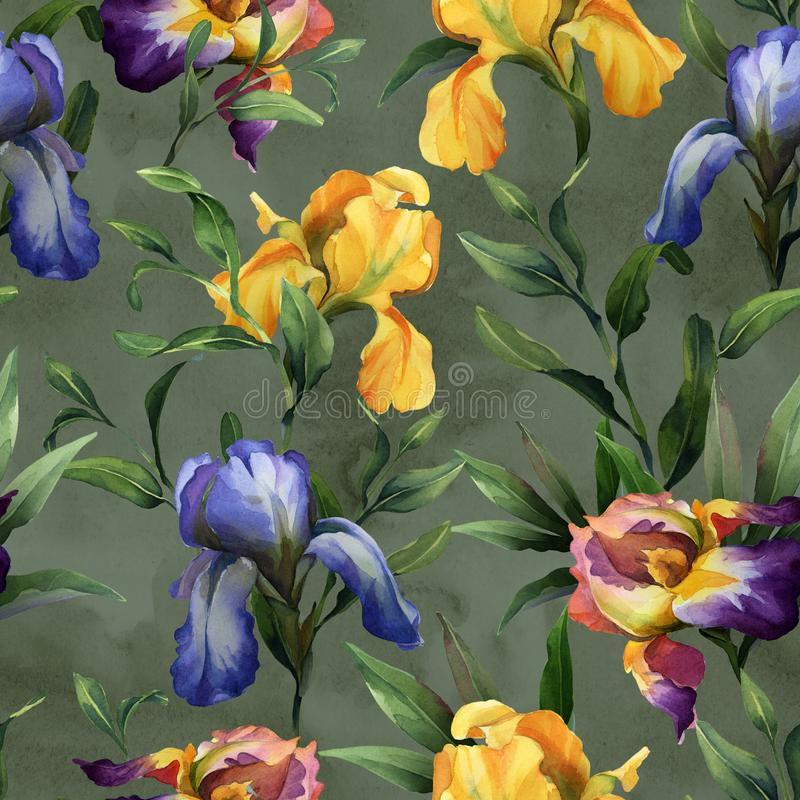 Watercolor seamless pattern with purple, yellow and blue iris flower and green leaves. On green background vector illustration