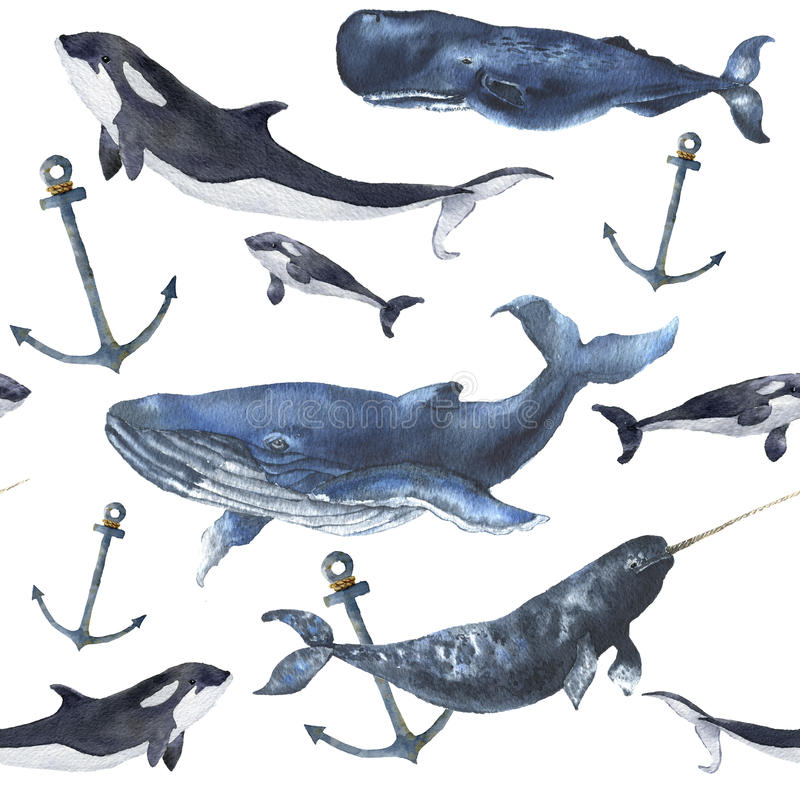 Watercolor seamless pattern with whales and anchor. Hand painted ornament with blue whale, narwhal, orca and sperm whale. Isolated on white background. Nautical vector illustration