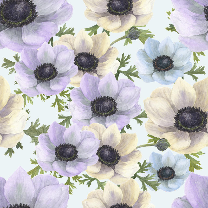 Watercolor seamless pattern with white, blue and violet anemones.Hand drawn floral illustration with vintage background. Botanical stock illustration