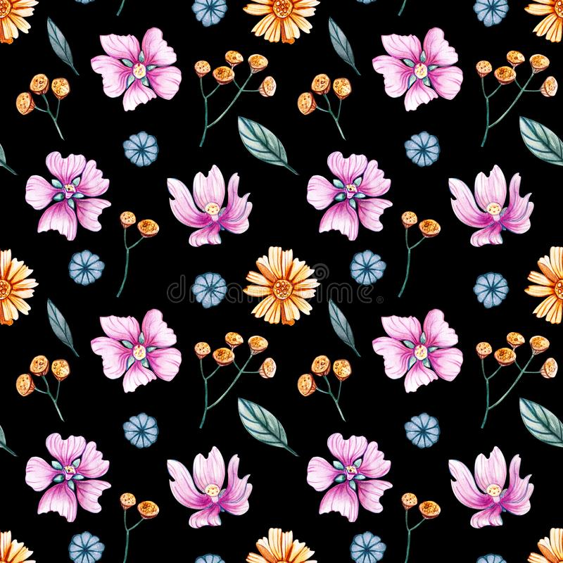 Watercolor seamless pattern with wild flowers on a black background. royalty free illustration