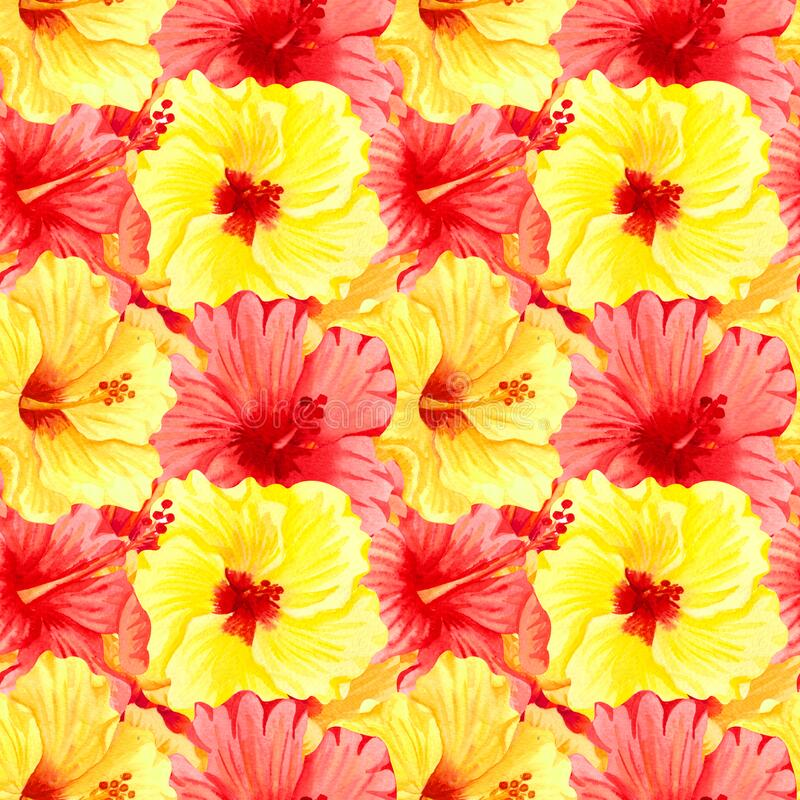 Watercolor seamless tropical floral pattern. Big yellow and red hibiscus flowers. Hand drawn watercolor seamless pattern with. Color tropical flowers. Sunny stock illustration