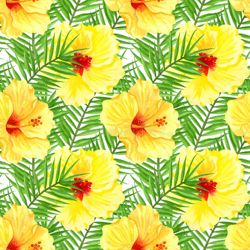 Watercolor seamless tropical floral pattern. Yellow hibiscus and palm leaves on white background. Hand drawn watercolor seamless. Pattern with colorful tropical royalty free illustration