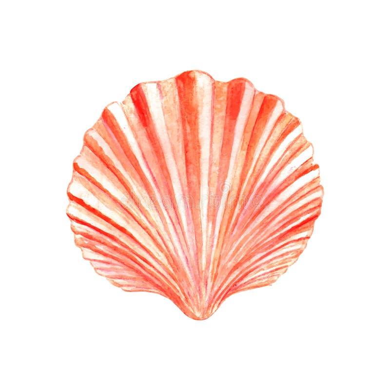Free Watercolor Seashell Stock Photos - 57397313