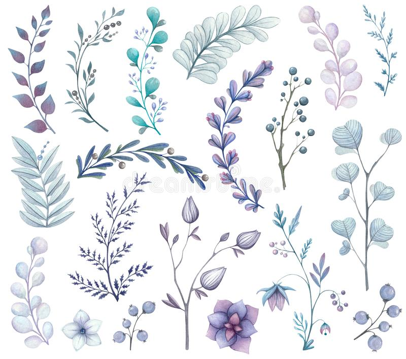 Watercolor set of branches and leaves in blue tones. Isolated royalty free illustration