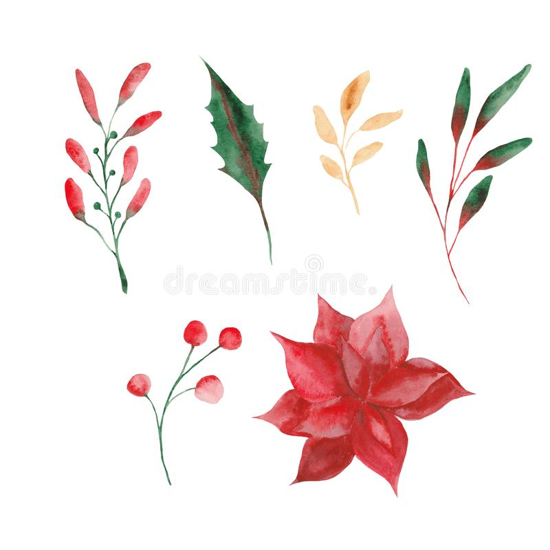 Watercolor set with Christmas leaves and flowers. stock illustration