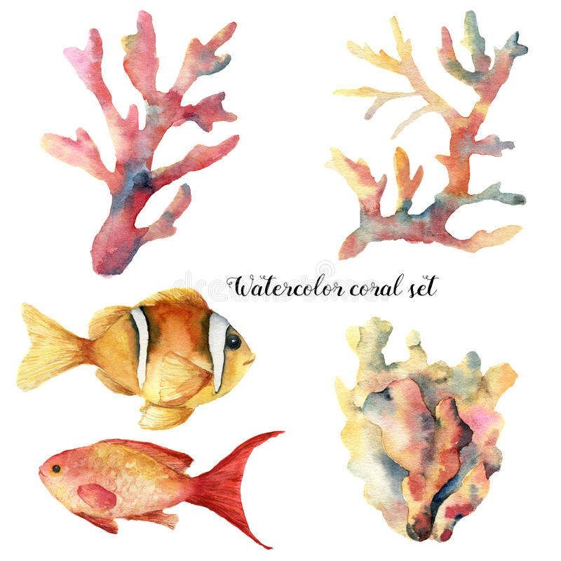 Watercolor set with coral and fish. Hand painted underwater branches and reef fish isolated on white background vector illustration