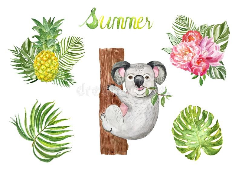 Watercolor summer set with cute koala bear and tropical leaves and plants, isolated on white background.  vector illustration