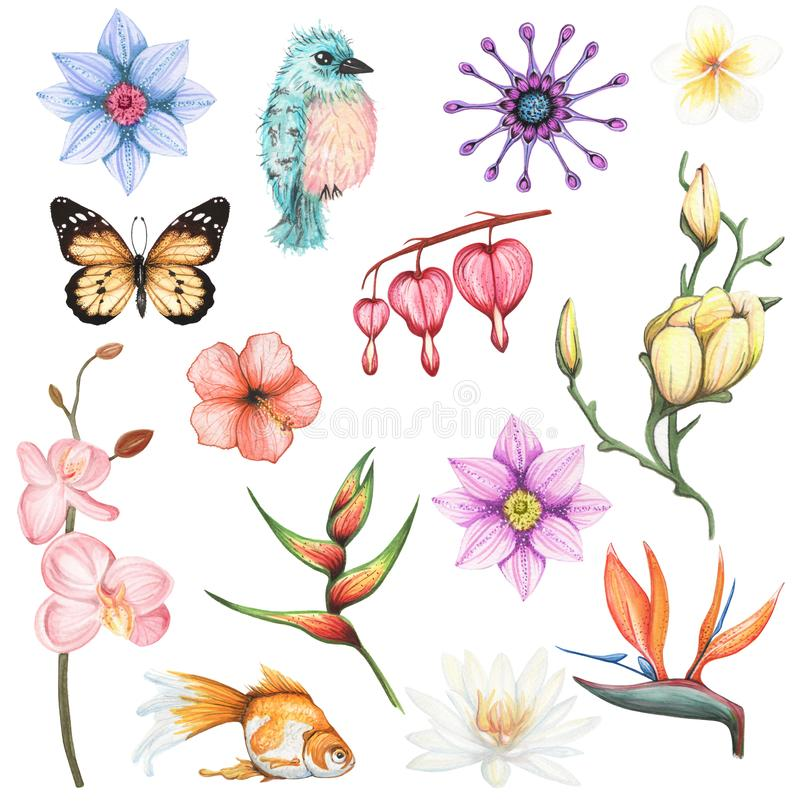Watercolor set with exotic flowers and animal element. Hand drawn illustration on white background isolated vector illustration