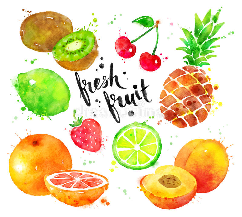 Watercolor set of fruit stock illustration