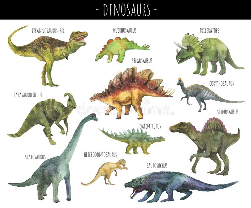 Watercolor set of hand drawn realistic dinosaurs royalty free illustration