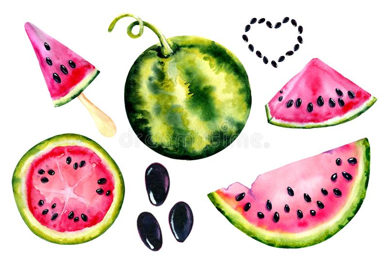 Watercolor set with the image of a watermelon. Juicy pulp and seeds for print design, banner, poster, cover, invitations royalty free illustration