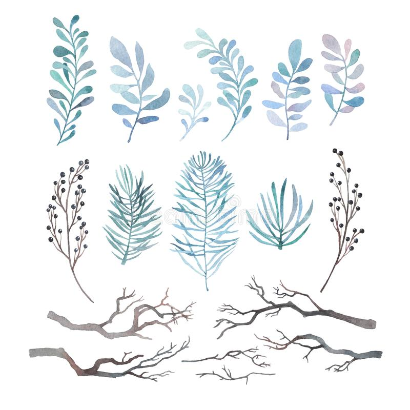 Free Watercolor Set Of Winter Branches Royalty Free Stock Photo - 106691675