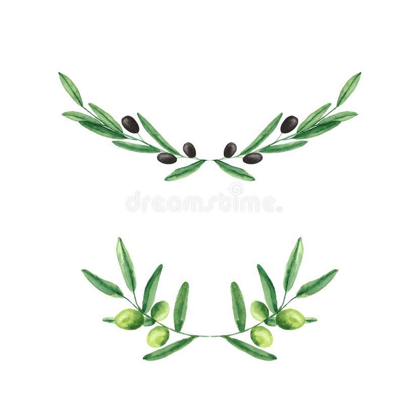 Watercolor set with olives, olive branches, a bottle of olive oil. On white buckground royalty free illustration