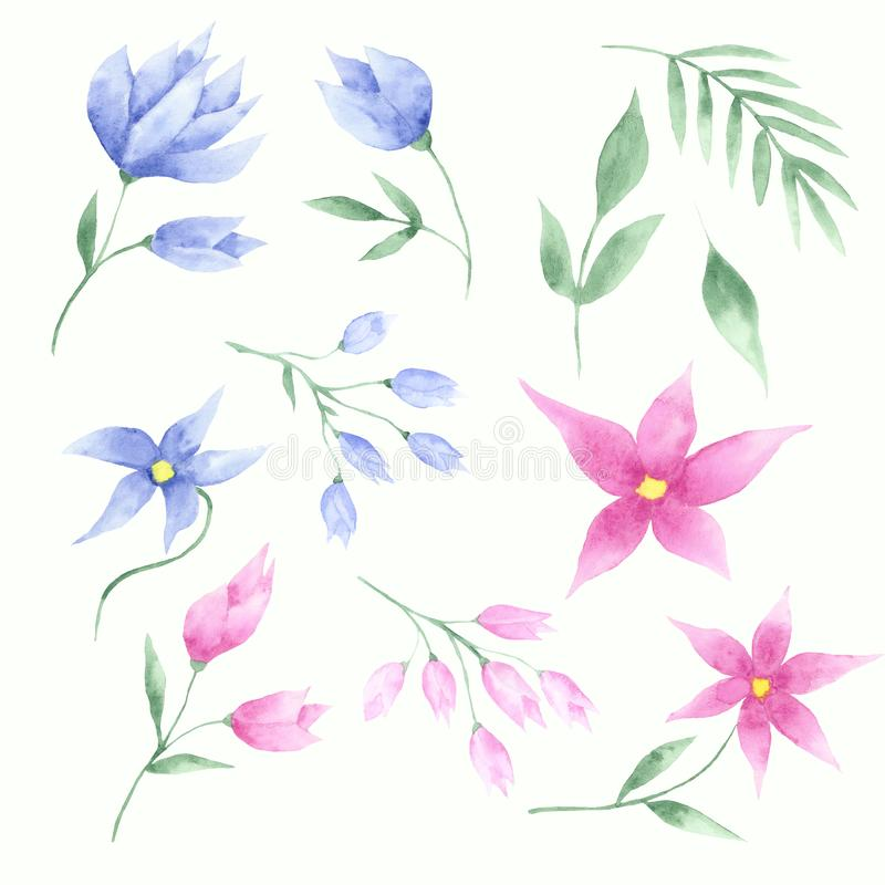Watercolor set of pink and blue flowers, tulips and leaves royalty free illustration