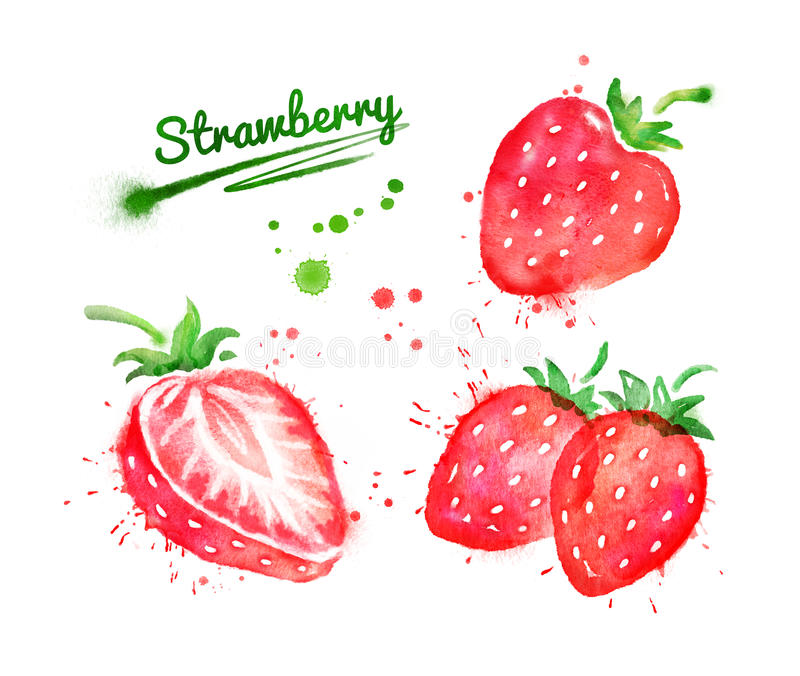 Watercolor set of strawberry stock illustration
