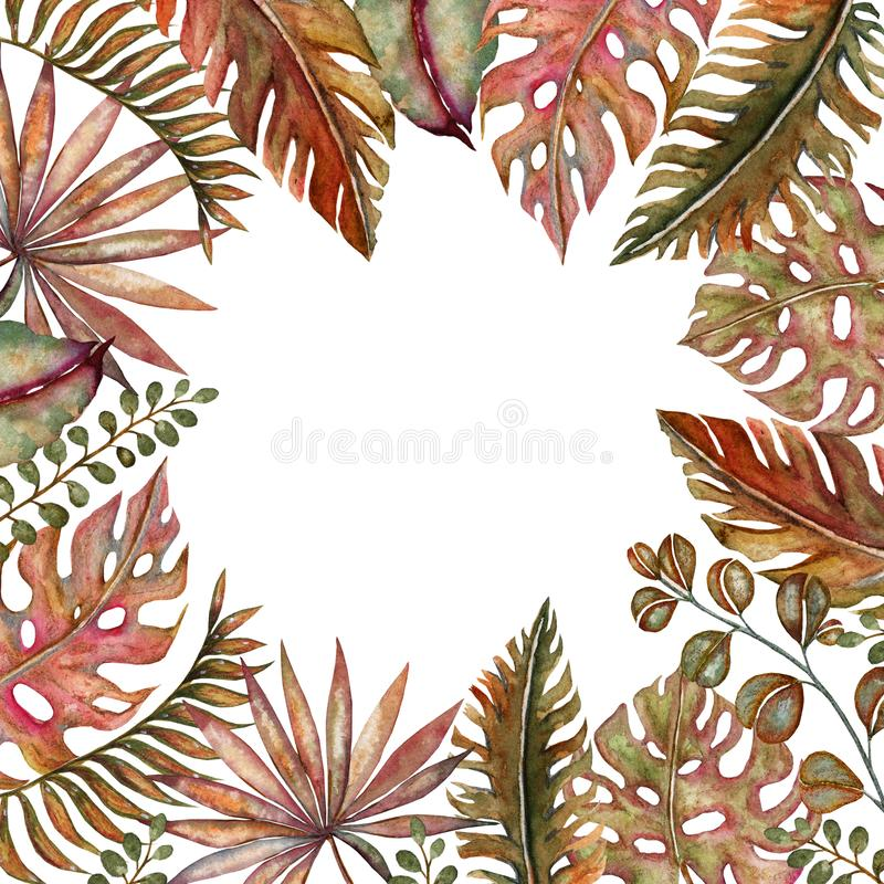 Watercolor set of vintage floral tropical natural elements. Exotic flowers, twigs and leaves. Botanical bright classic royalty free illustration