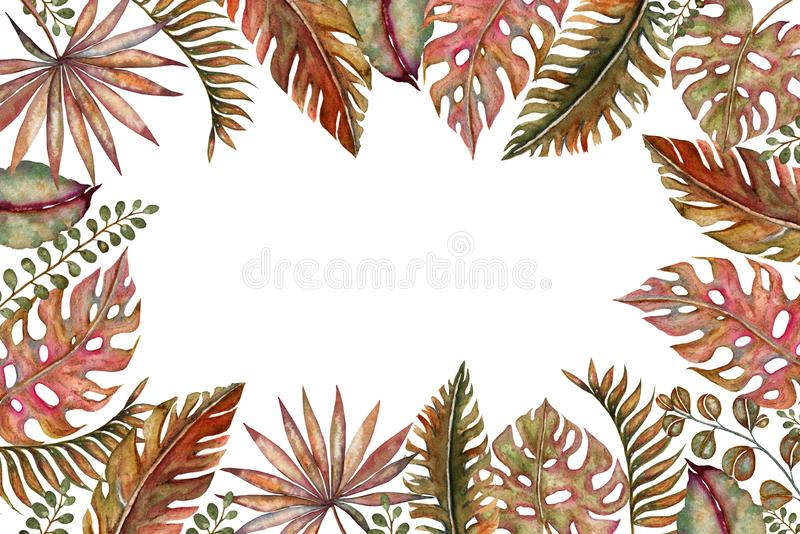 Watercolor set of vintage floral tropical natural elements. Exotic flowers, twigs and leaves. Botanical bright classic stock illustration