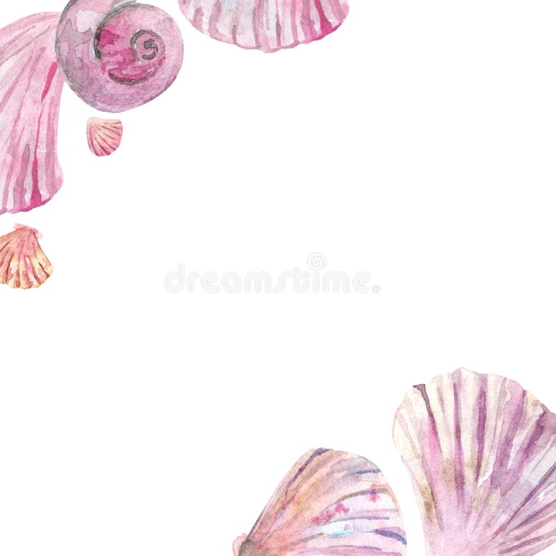 Watercolor pink shell border vector illustration