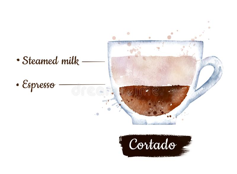 Watercolor side view illustration of Cortado coffee stock illustration