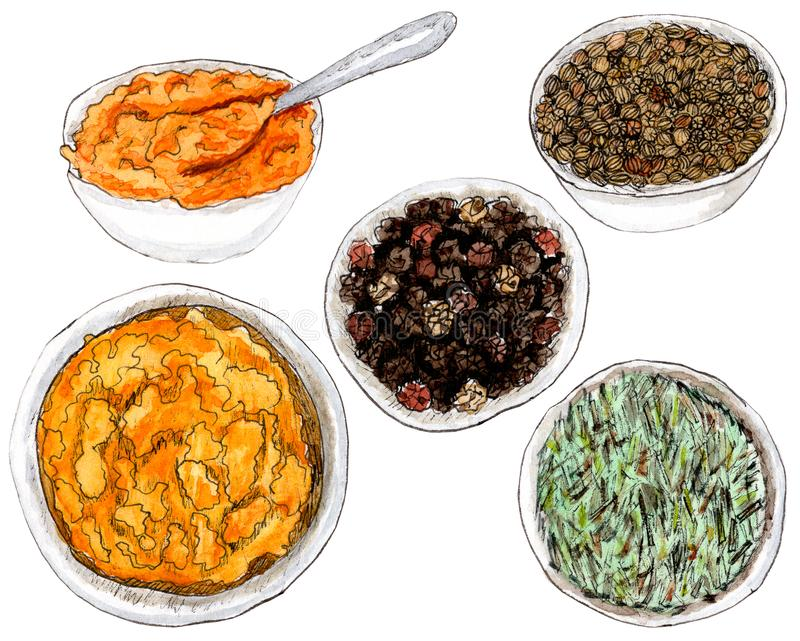 Watercolor spices in dish stock images