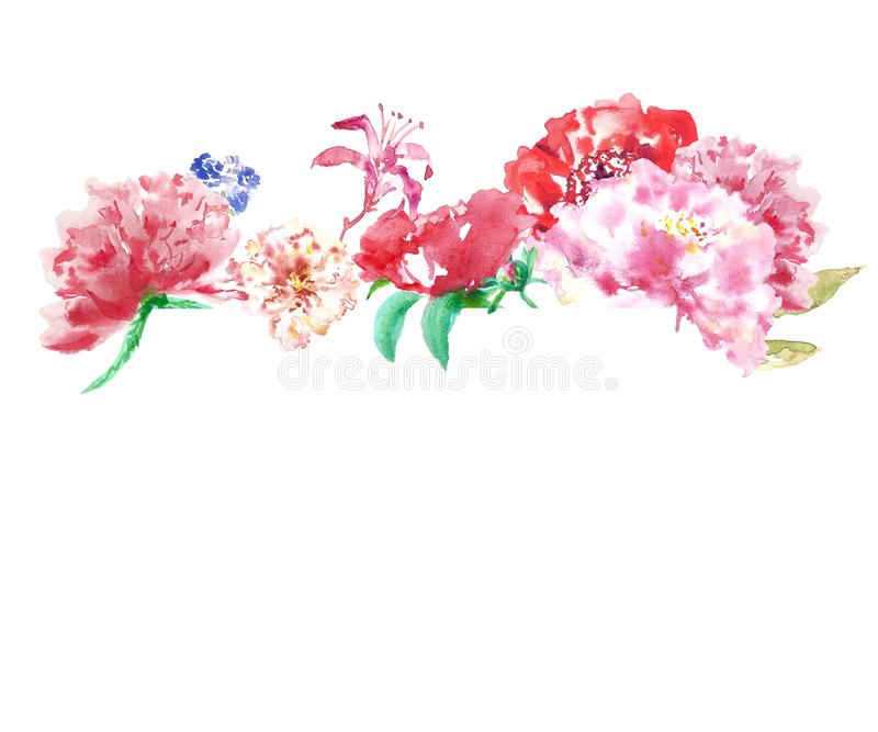 Watercolor spring floral border with pink and red peony flowers, isolated on white background. vector illustration