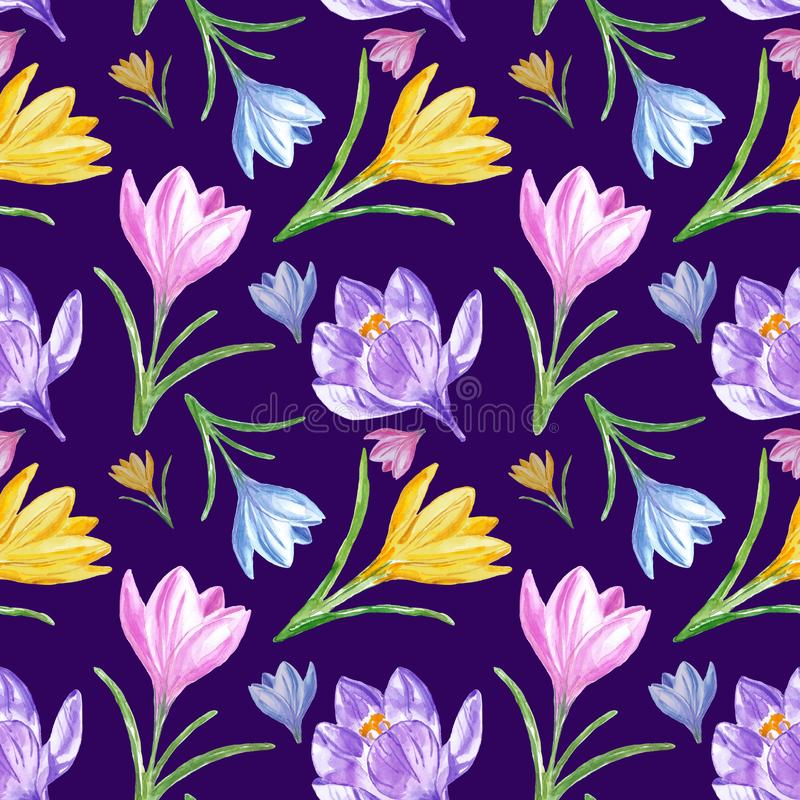 Watercolor spring floral seamless pattern with colorful crocuses on deep purple blue background. stock photo