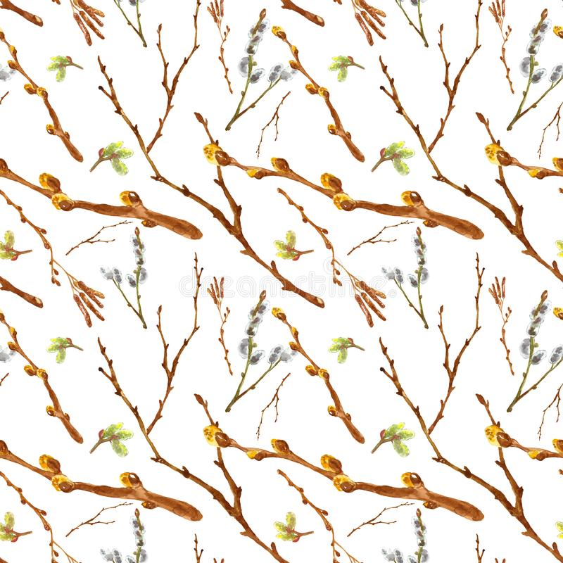 Watercolor spring seamless pattern with pussy willow twigs and tree branches isolated on white background. royalty free stock image