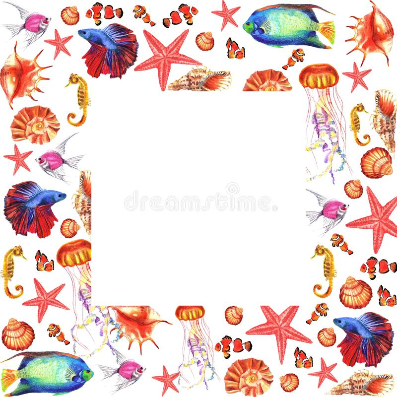 Watercolor square frame with water-plants, corals, fishes, shells stock illustration