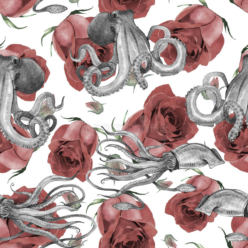 Watercolor squid, octopus. Watercolor squid octopus seamless pattern, hand painted illustration isolated on white background vector illustration