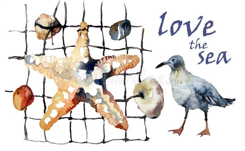 Watercolor: starfish, pebbles, seashells and seagulls royalty free stock image