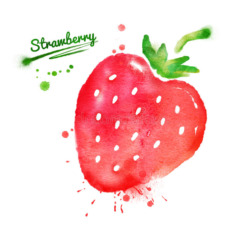 Watercolor strawberry vector illustration