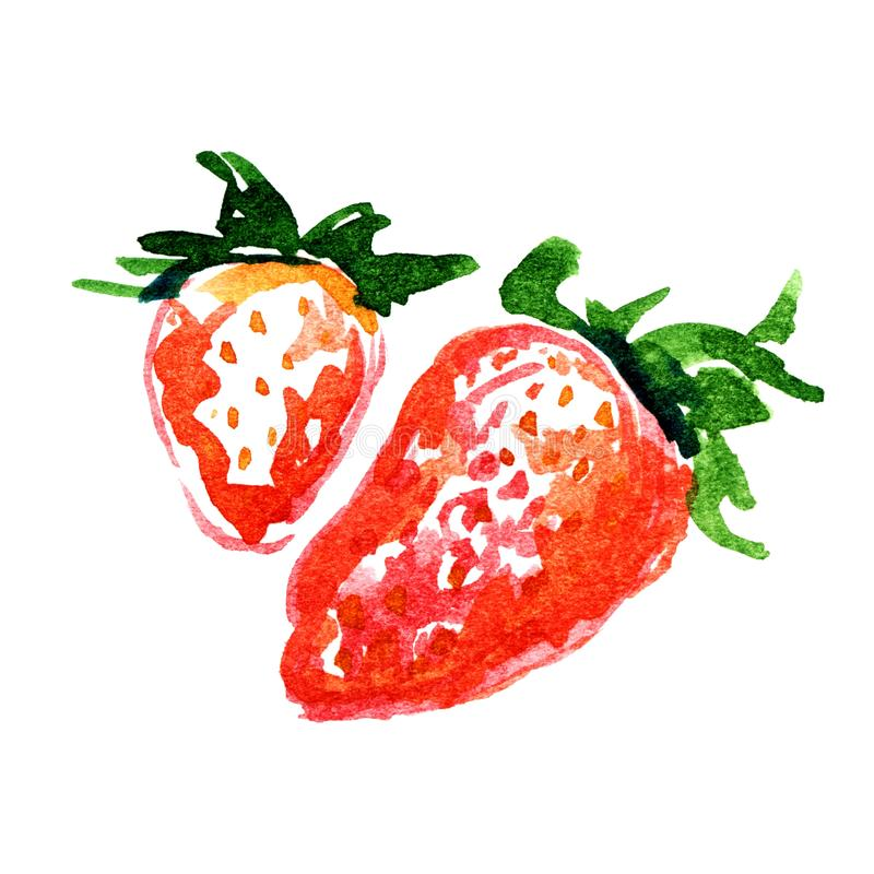 Watercolor strawberry isolated stock photography