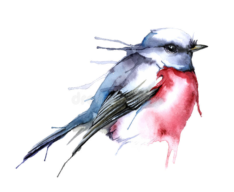 Watercolor style vector illustration of bird. stock illustration