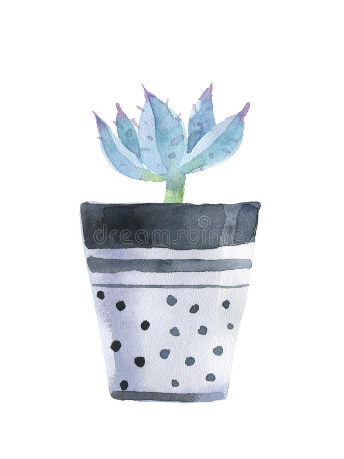 Watercolor succulent in a flowerpot. Isolated on a white background stock illustration