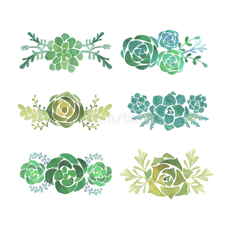 Free Watercolor Succulent Set Stock Photography - 55602952