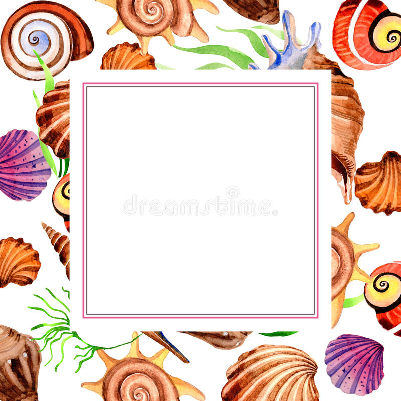 Watercolor summer beach seashell tropical elements frame, underwater creatures. Watercolor summer beach seashell tropical elements frame. Underwater creatures royalty free illustration