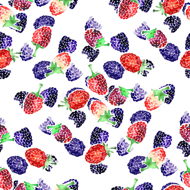 Watercolor summer blackberry and raspberry pattern stock image