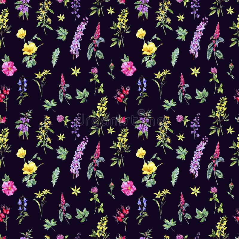 Watercolor summer medicinal floral seamless pattern, Wildflowers plant stock illustration