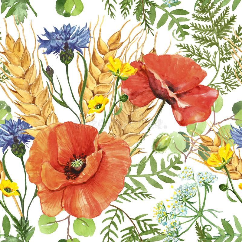 Watercolor red poppy and wheat in a meadow seamless pattern on white background. Wild flowers botanical print. Watercolor summer wild flowers seamless pattern royalty free illustration