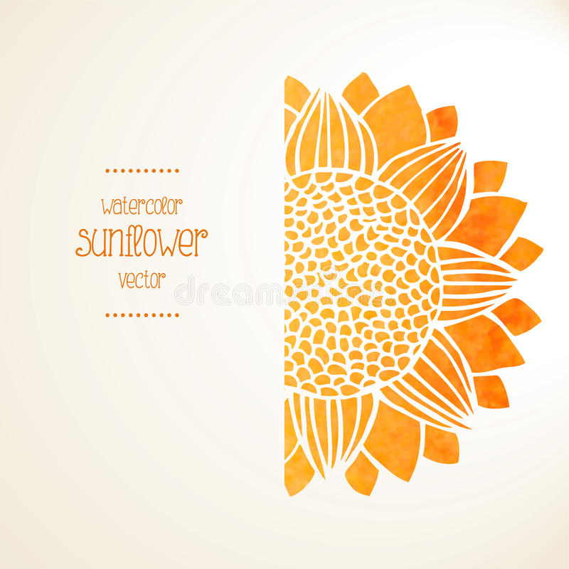 Watercolor sunflower. Vector background royalty free illustration