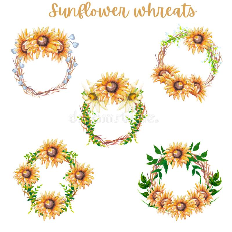 Free Watercolor Sunflower Wreaths, Set Of 5 Royalty Free Stock Photography - 179835577
