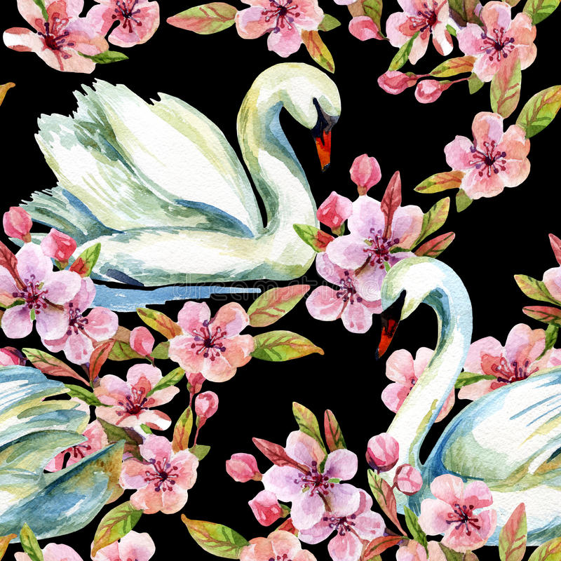 Watercolor swan and cherry bloom. Swimming bird among flowers seamless pattern. Hand painted illustration on black background royalty free illustration