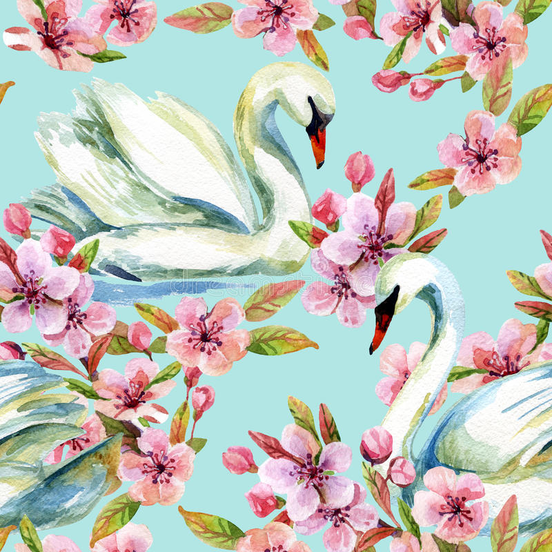 Watercolor swan and cherry bloom. Swimming bird among flowers seamless pattern. Hand painted illustration on blue background royalty free illustration