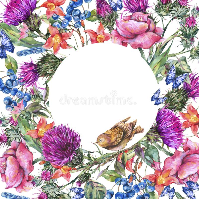 Watercolor thistle, poppy, blue butterflies, wild flowers round frame, meadow herbs royalty free illustration