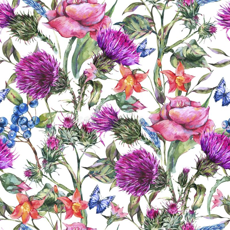 Watercolor thistle, poppy, blue butterflies, wild flowers seamless pattern, meadow herbs stock illustration