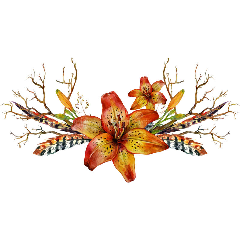Watercolor tiger lily stock vector image of lily nature - Tiger lily hair salon ...
