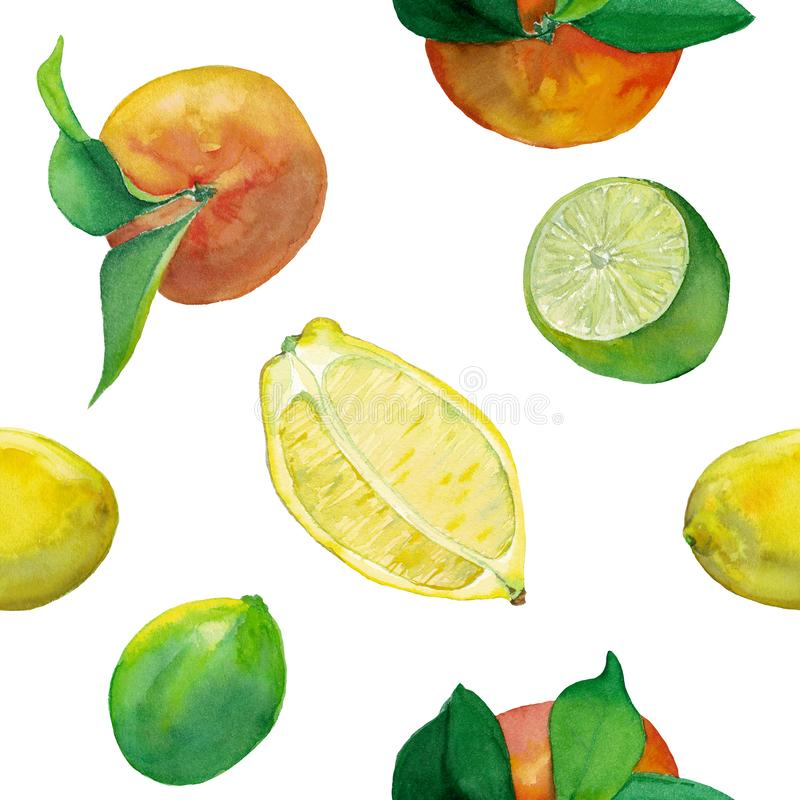 Watercolor tile of fresh lemon, lime and oranges. Watercolor seamless pattern of fresh citrus fruits- lemon, lime and oranges. Fruits with leaves and cut in the royalty free illustration