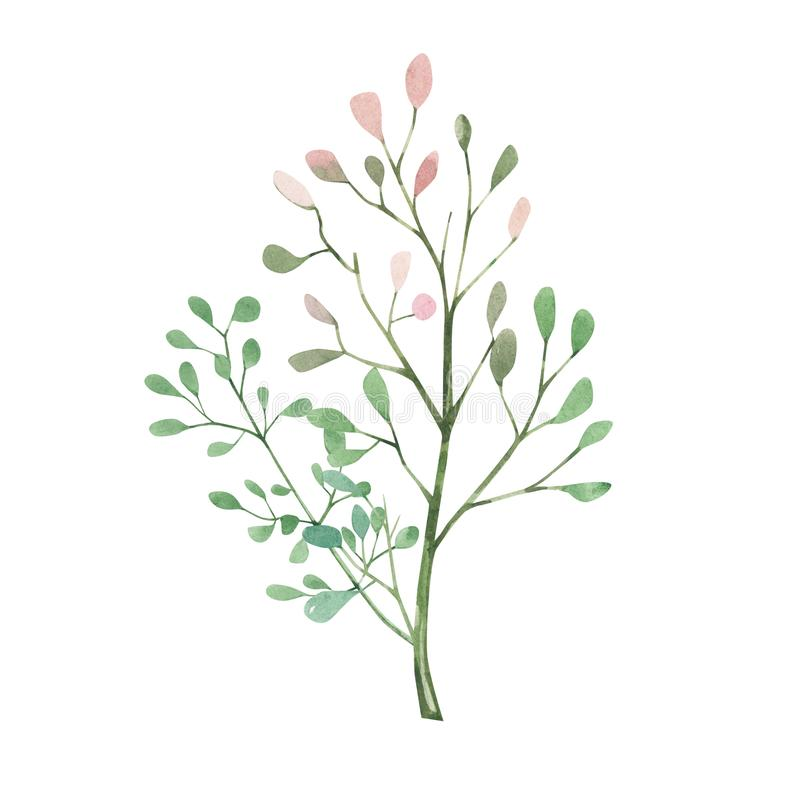 Watercolor tree isolated on white background. Eco design. Colorful watercolor romantic texture for card, template, banner. Poster stock illustration